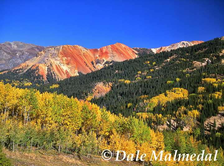 Autumn at Red Mountain